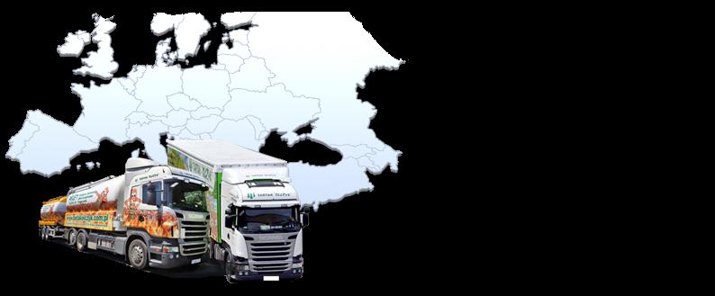 Máme vlastní flotilu nákladních aut připravených k přepravě pelet do nejvzdálenějších koutů Evropy. Rychle realizujeme objednávky a garantujeme včasné dodání!